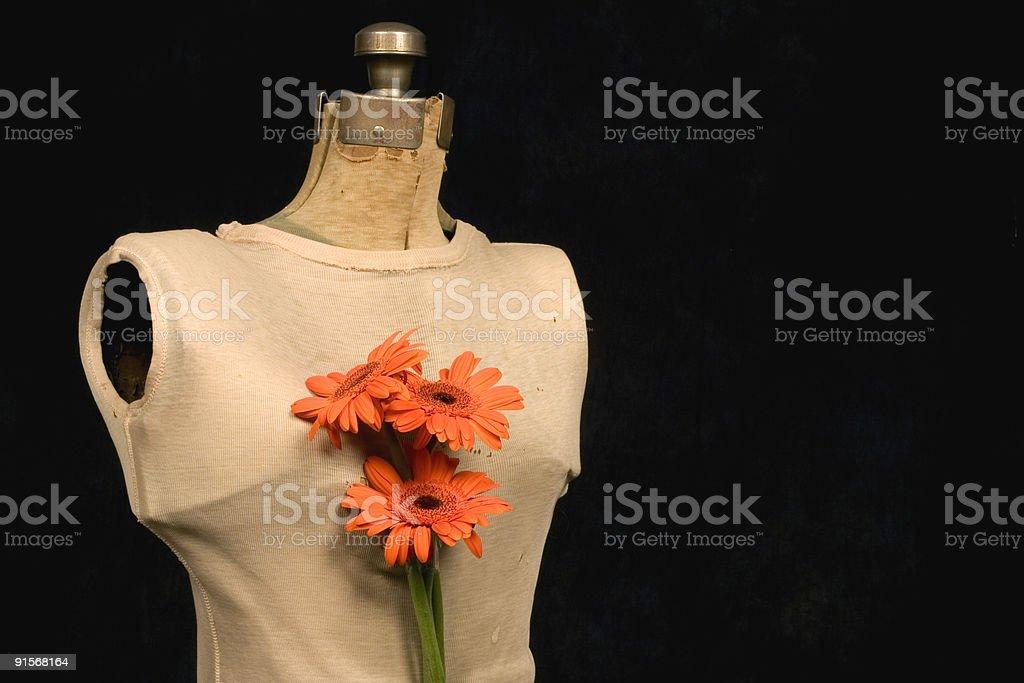 dress form royalty-free stock photo