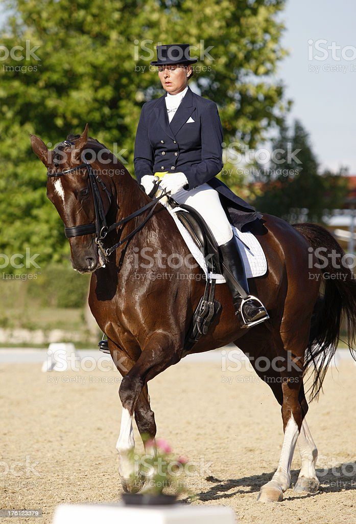 Dressage competition royalty-free stock photo
