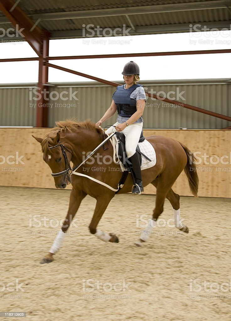 Dressage horse and woman rider royalty-free stock photo