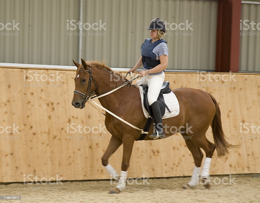 Dressage horse and woman rider stock photo