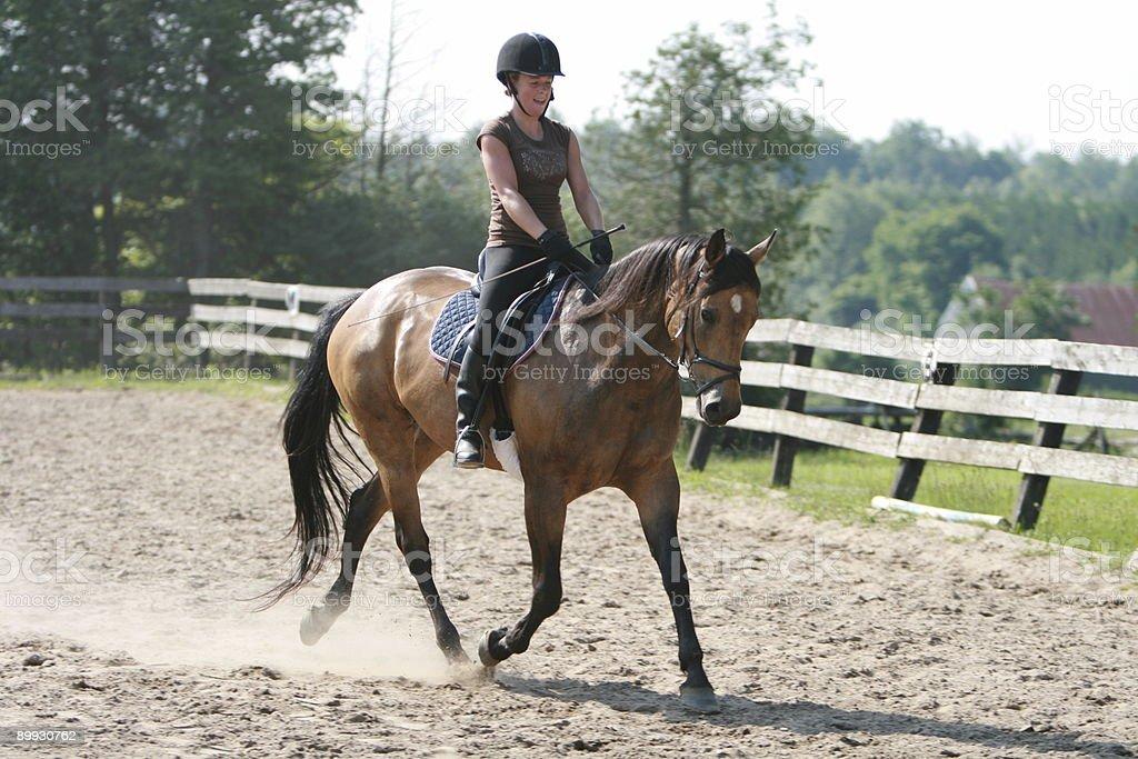 Dressage Rider Schooling... stock photo