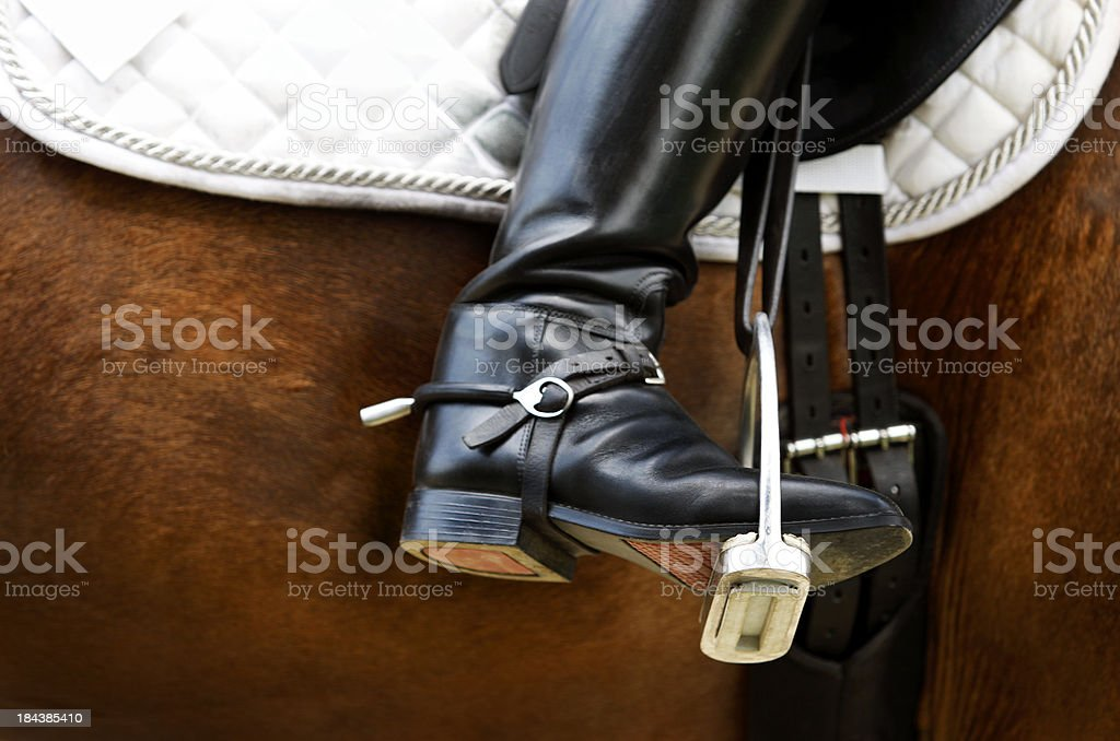 Dressage, riding boot stock photo