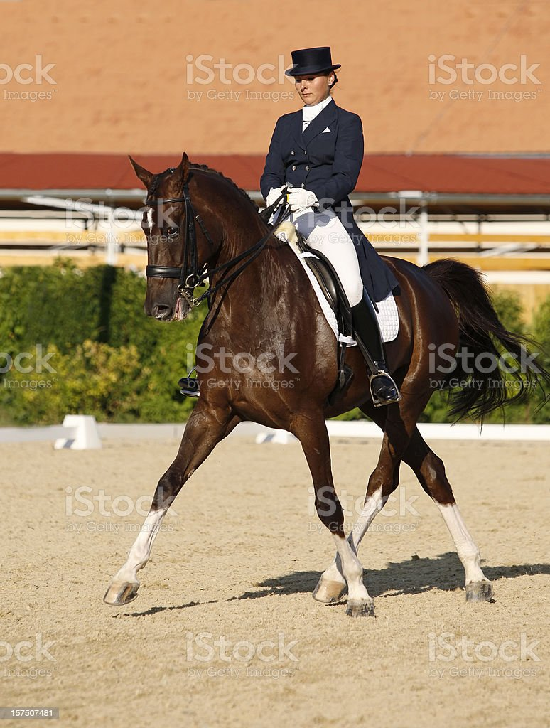 Dressage scene, half-pass in trot stock photo