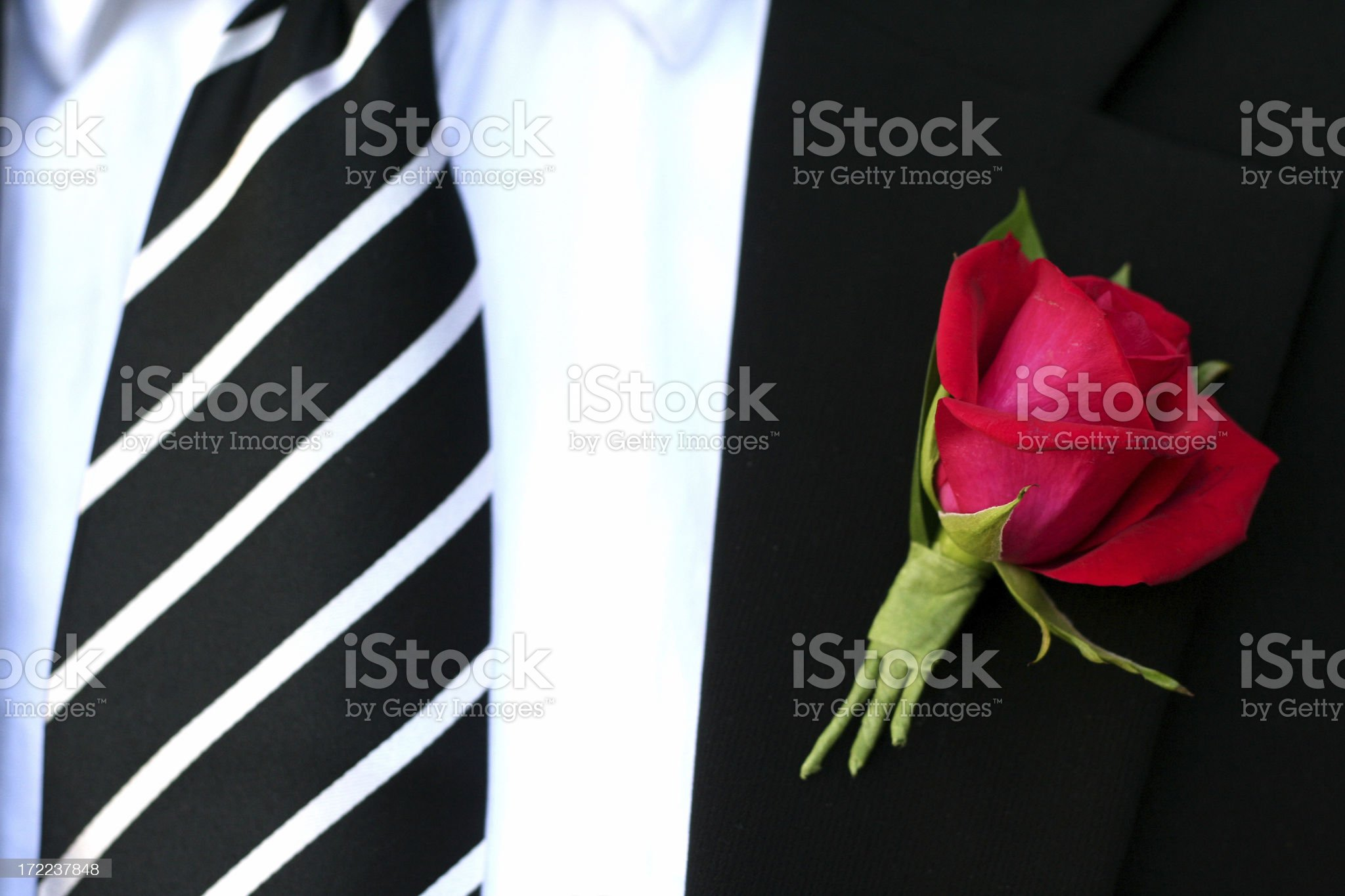 dressed and ready... royalty-free stock photo