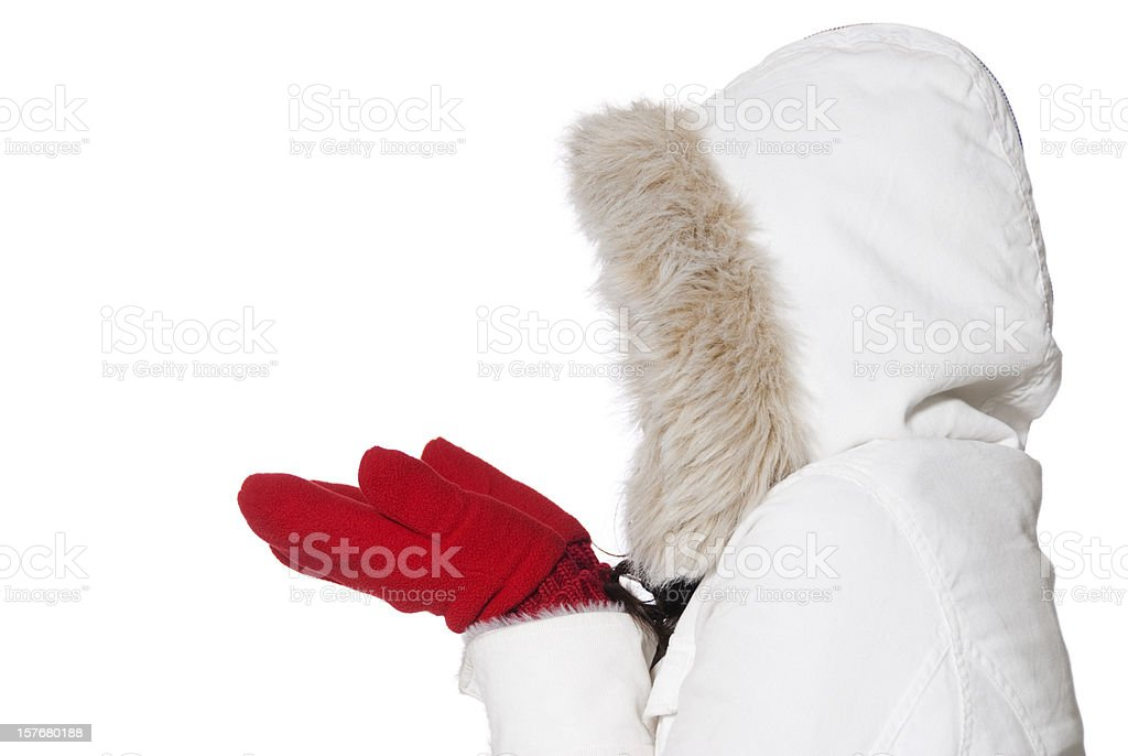 Dressed for Winter royalty-free stock photo