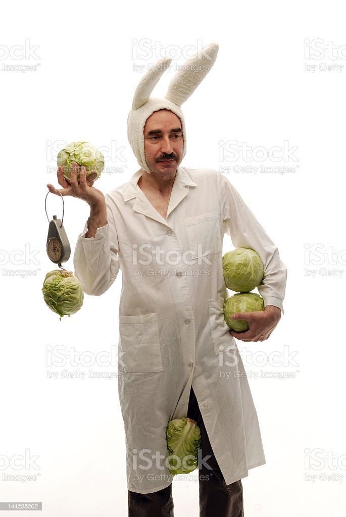 Dress-up bunny holding five cabbage heads one between his legs royalty-free stock photo