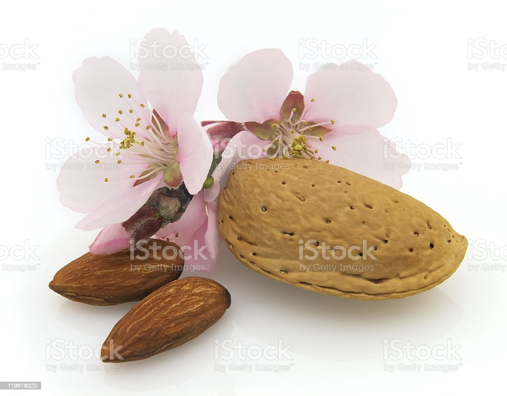 Dried almonds with pink flowers royalty-free stock photo