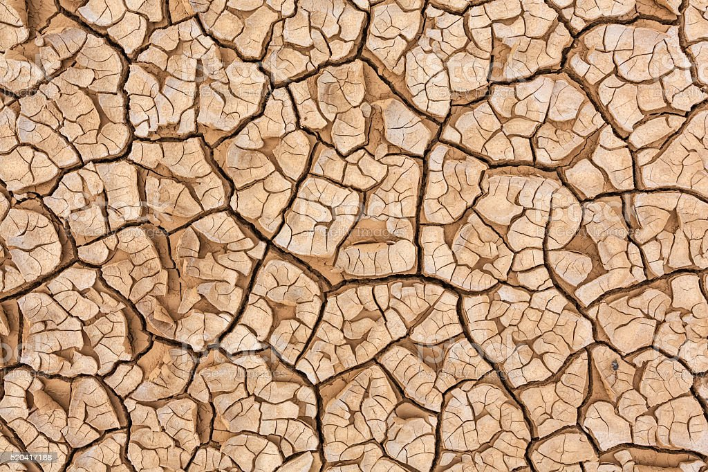 Dried and cracked ground in the desert stock photo