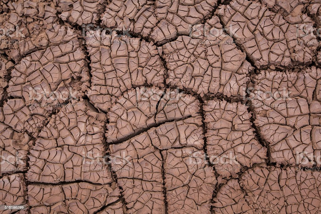 Dried and cracked mud royalty-free stock photo