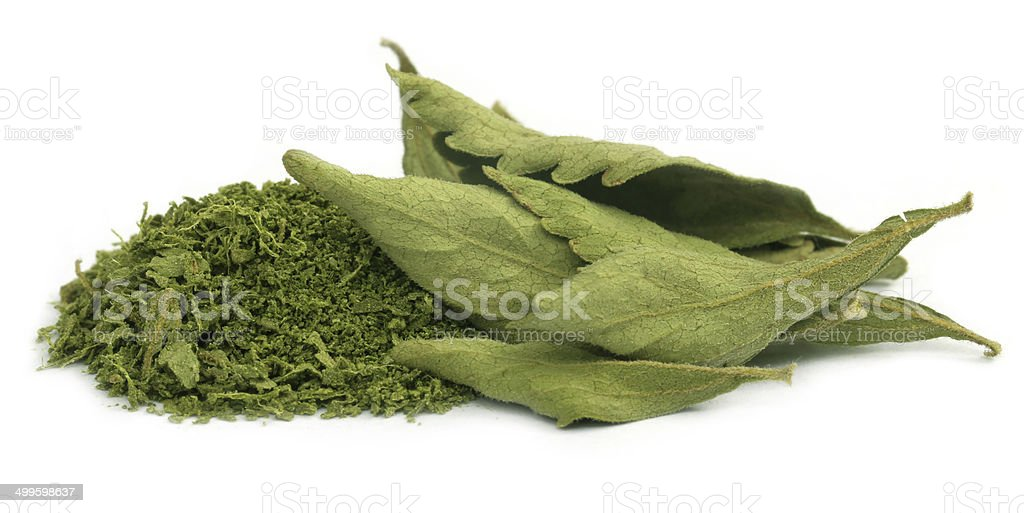 Dried and crushed Stevia stock photo