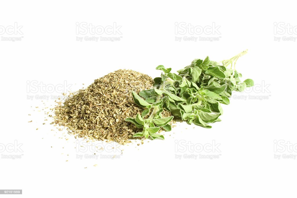 Dried and Fresh Oregano royalty-free stock photo