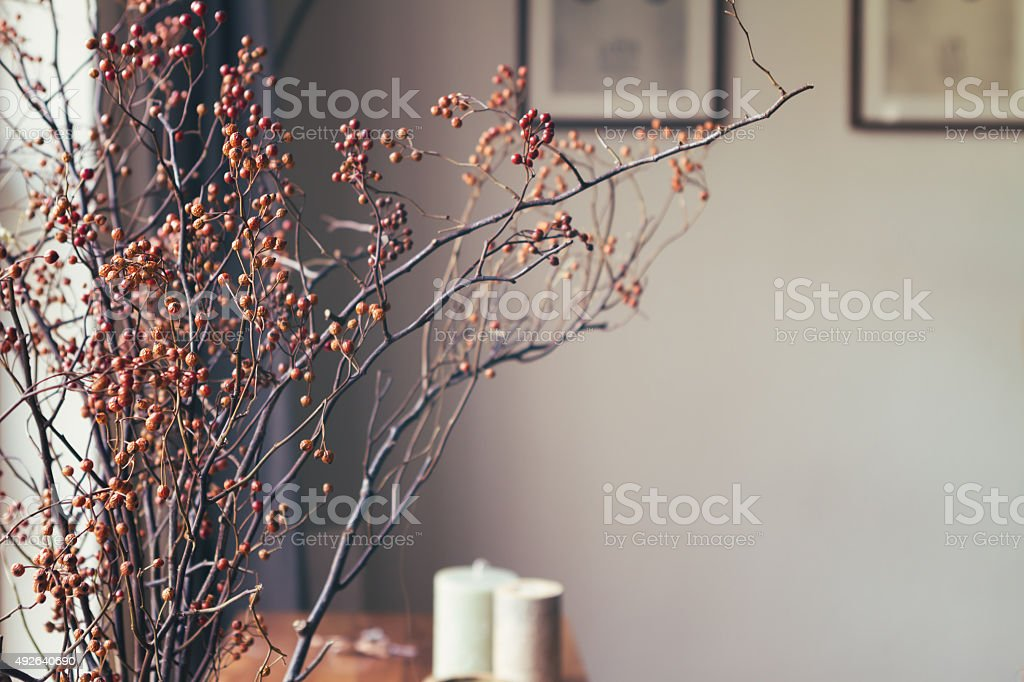 Dried berry stick floral arrangement in home interior stock photo