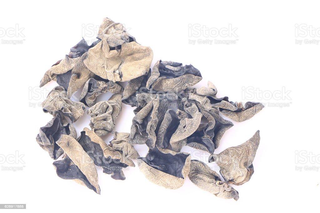 Dried black fungus or Auricularia polytricha stock photo