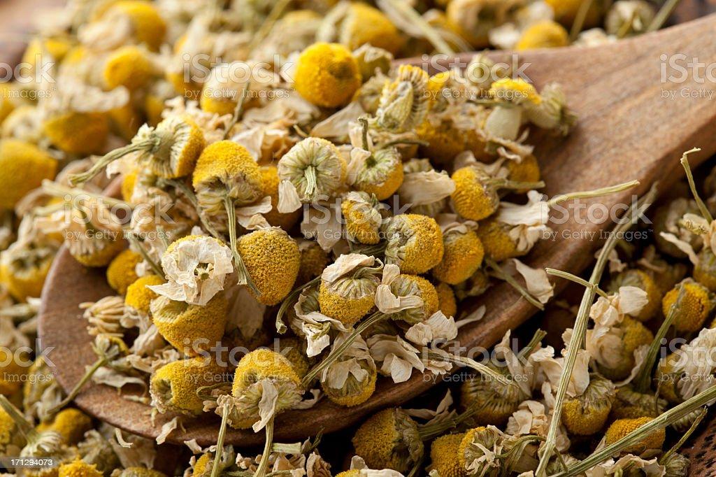 Dried chamomile stock photo