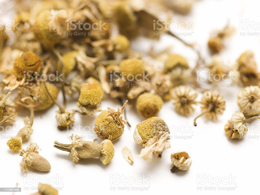 dried chamomile royalty-free stock photo