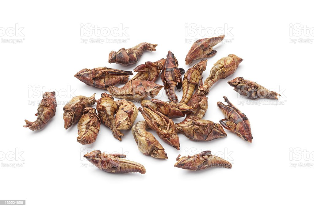 Dried chapulines stock photo