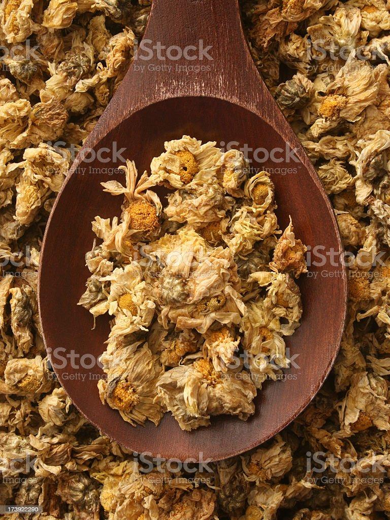Dried chrysanthemum flowers royalty-free stock photo
