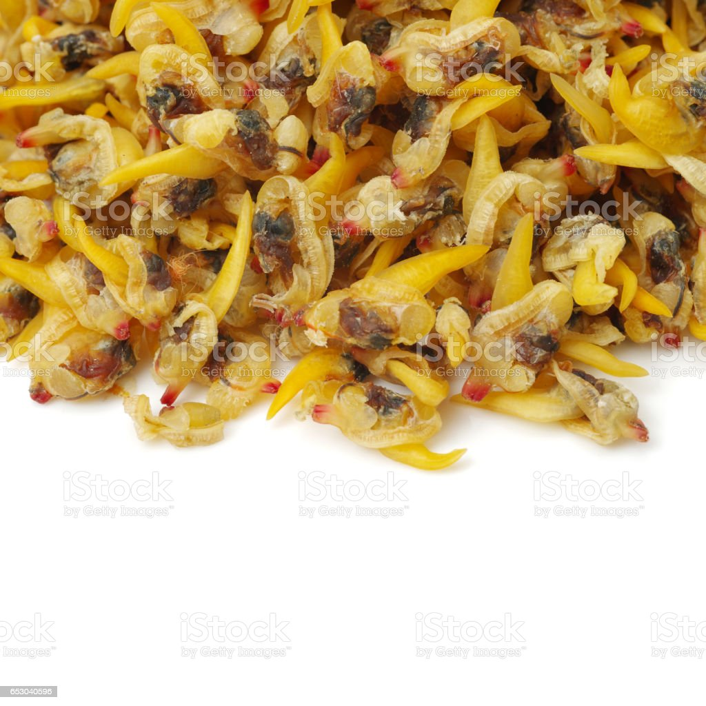 Dried clam meat isolated on white background stock photo