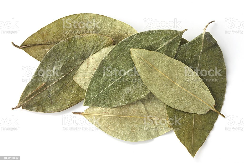 Dried Coca Leaves stock photo