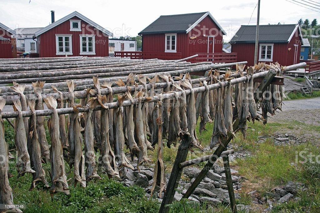 dried cod royalty-free stock photo