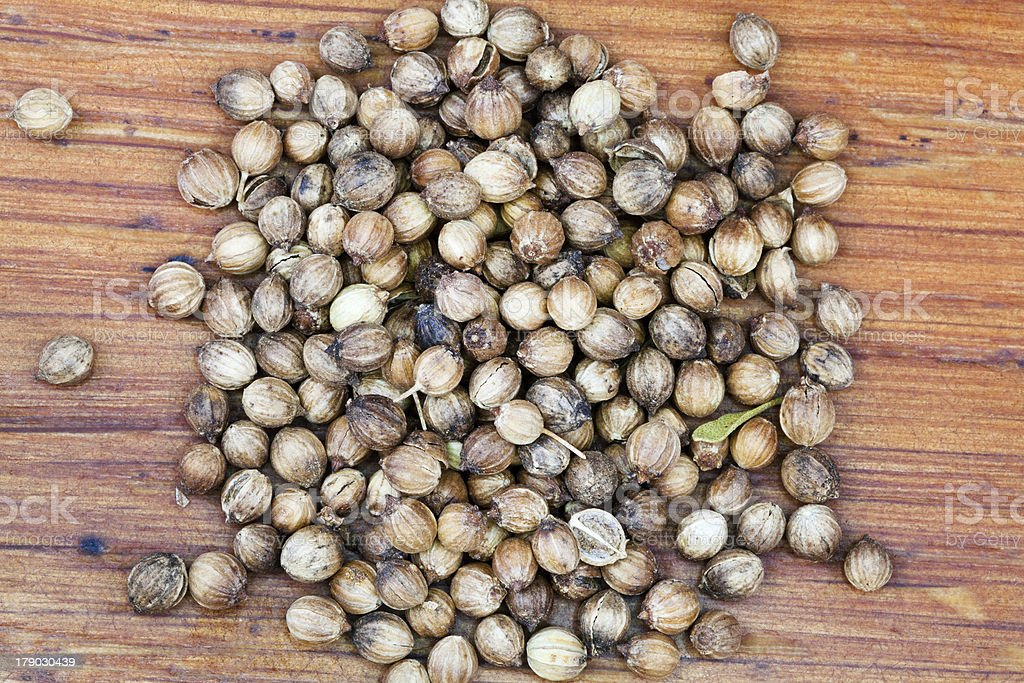dried coriander seeds royalty-free stock photo