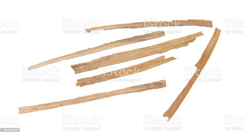 dried corn arrow stock photo