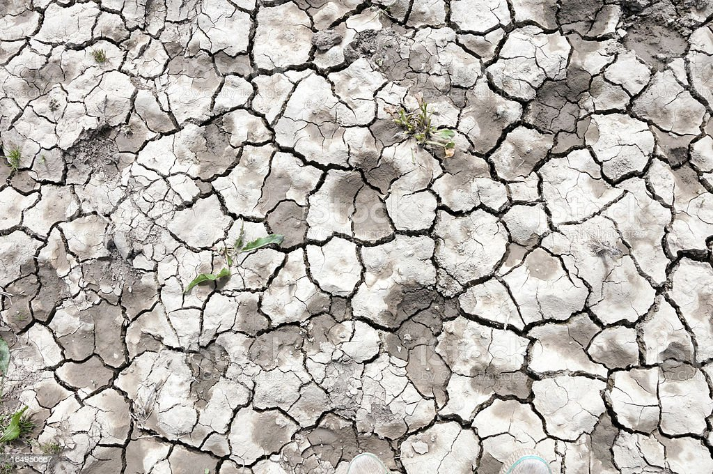 Dried cracked soil royalty-free stock photo