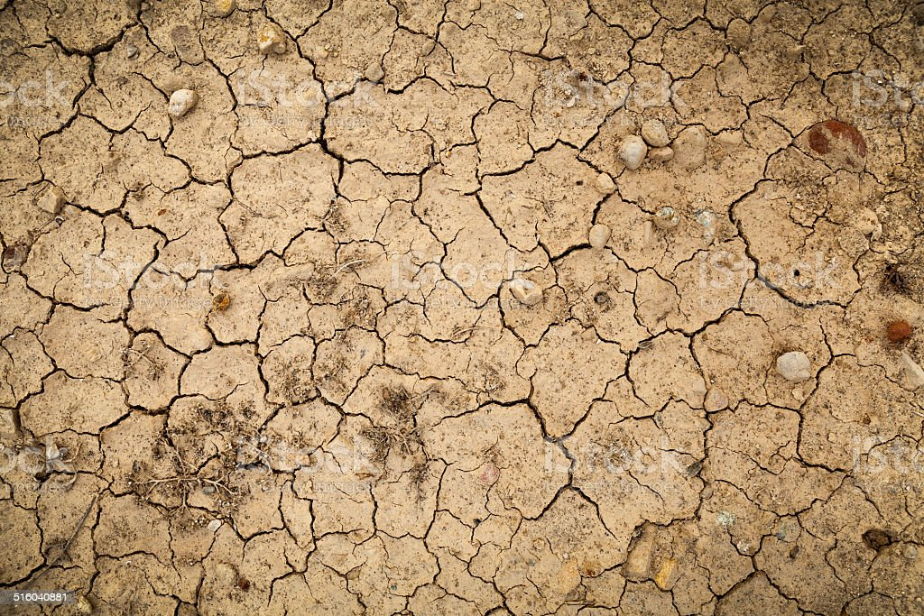 Dried Creekbed On Catalina Island, Severe California Drought royalty-free stock photo