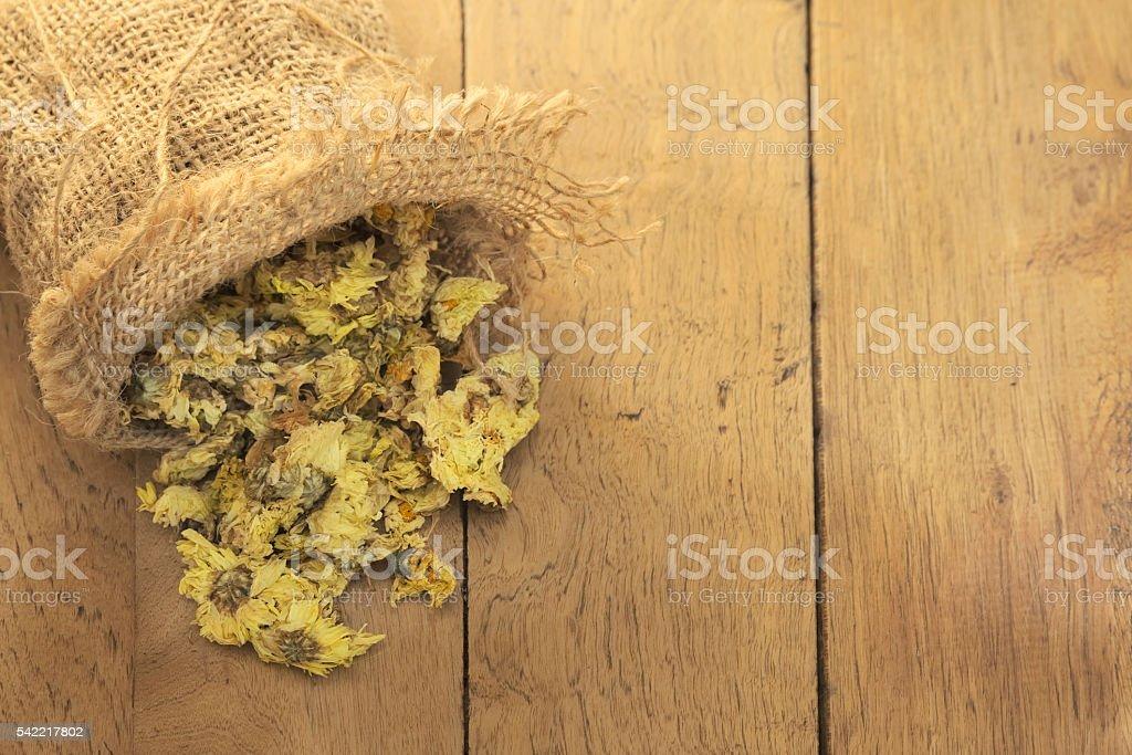 Dried Crysanthemum flower stock photo