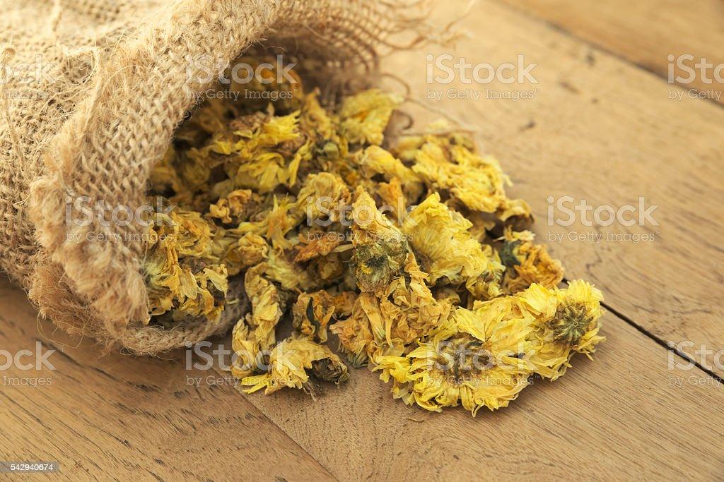 Dried Crysanthemum flowers stock photo