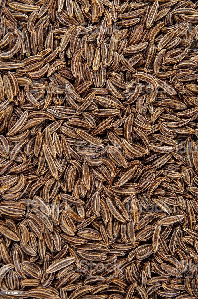 Dried cumin seeds stock photo