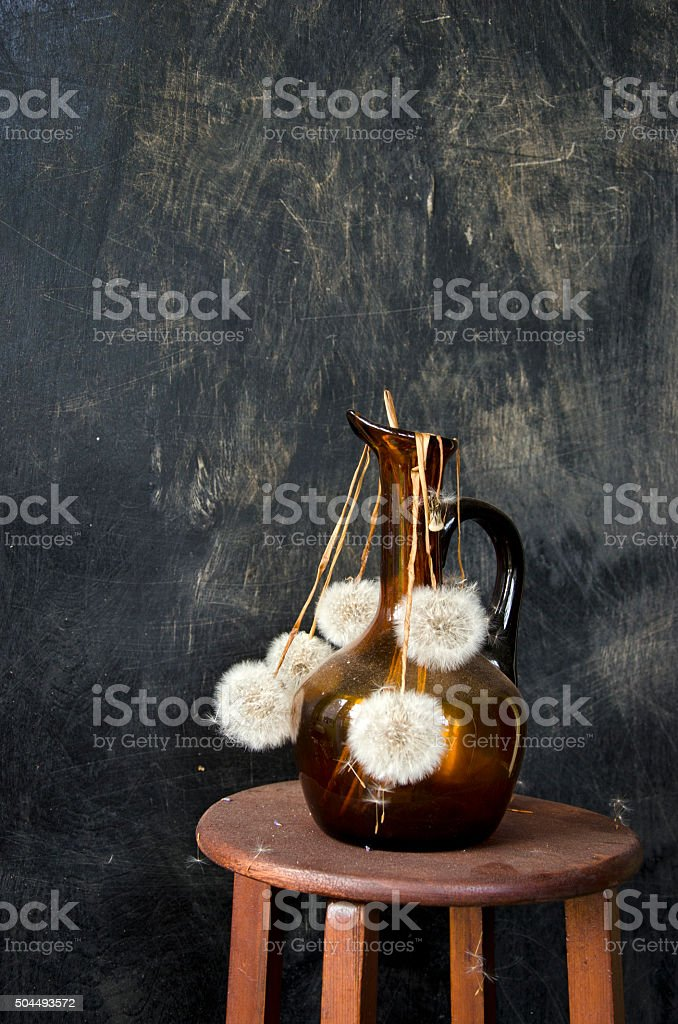 Dried dandelion seedheads in a vase.  Still-life stock photo
