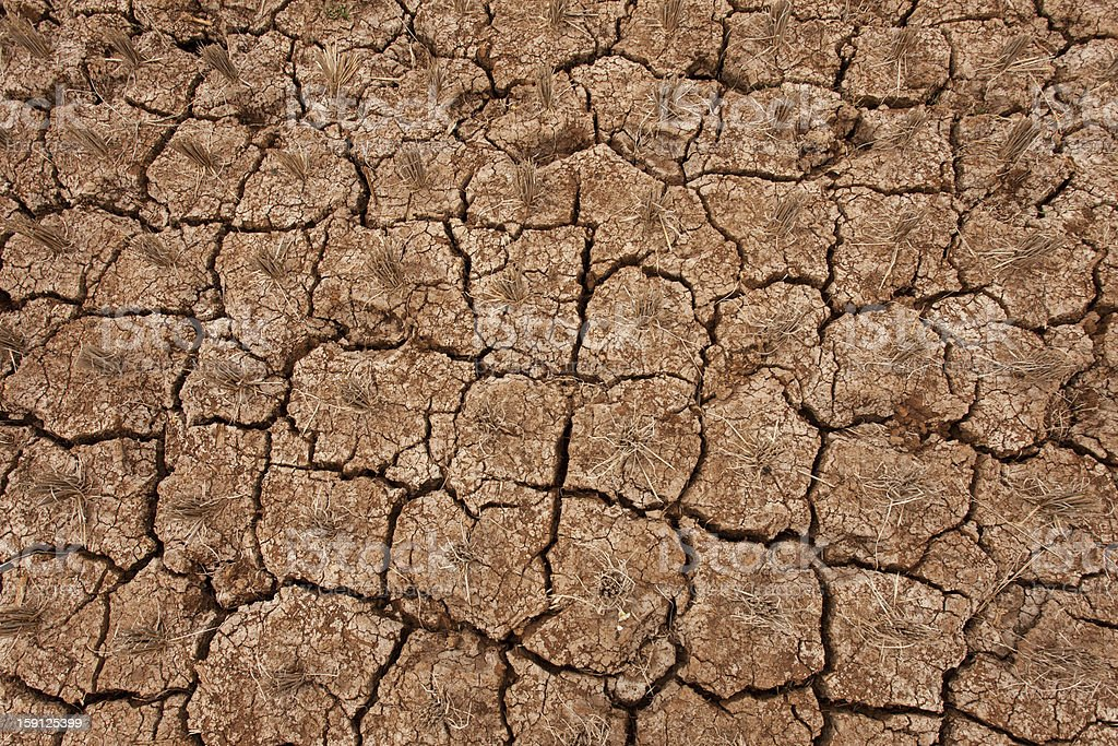 Dried Earth royalty-free stock photo