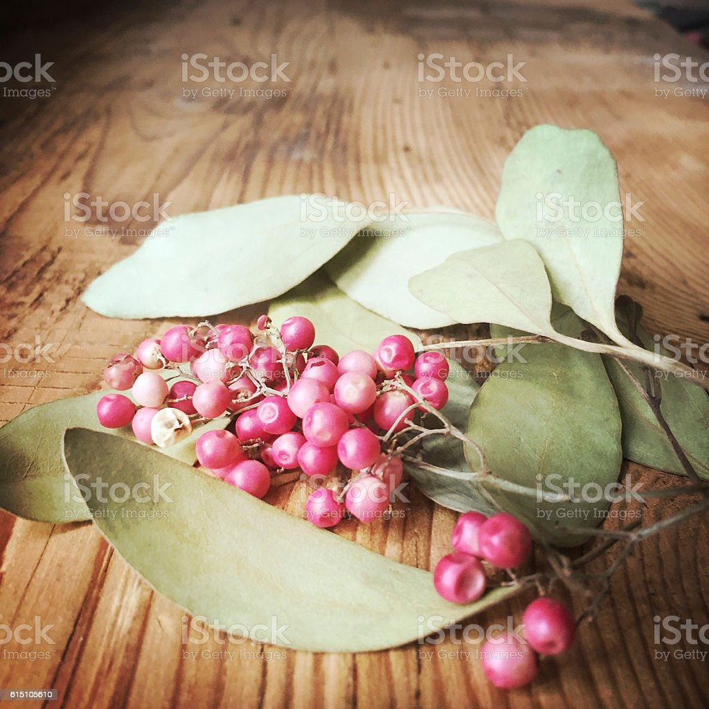 Dried Eucalyptus Leaaves and Pepperberries stock photo