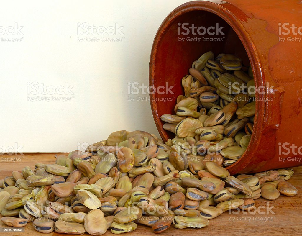 dried fava beans poured from a container in terracotta stock photo