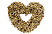 Dried Fennel Seeds isolated