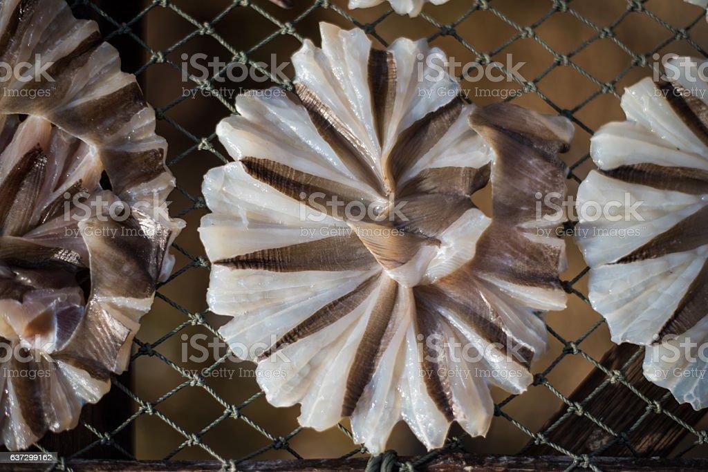 Dried fish 18 stock photo