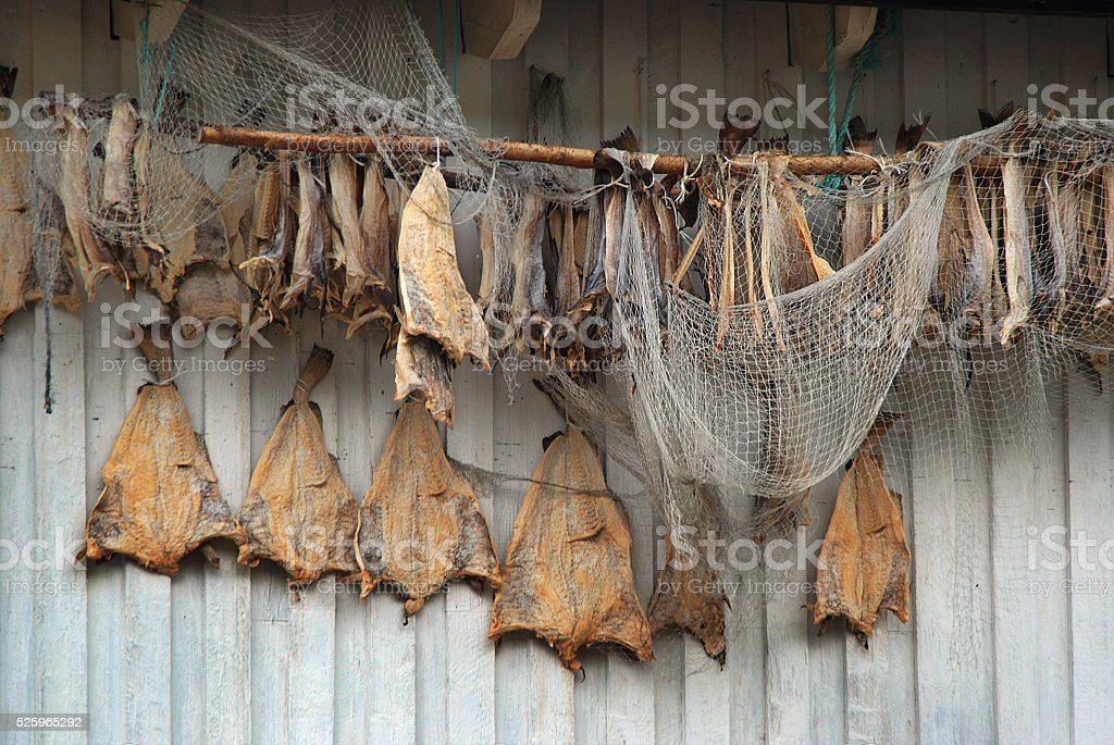 Dried fish and fishnet stock photo