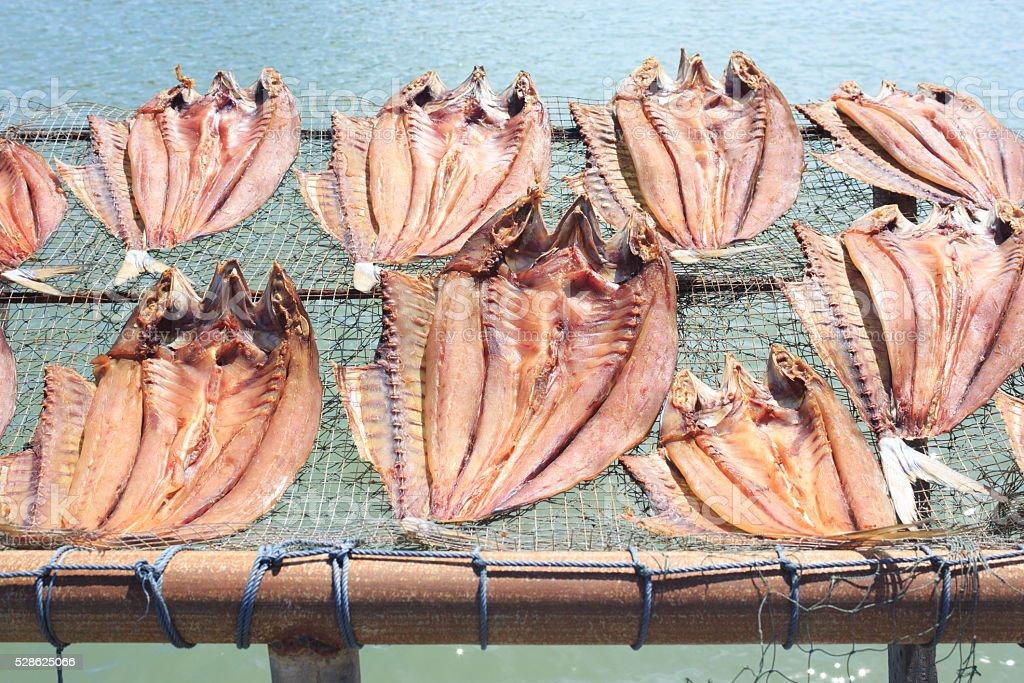 Сушеные рыбы поместить в штатив бамбук лоток на солнечный свет Стоковые фото Стоковая фотография