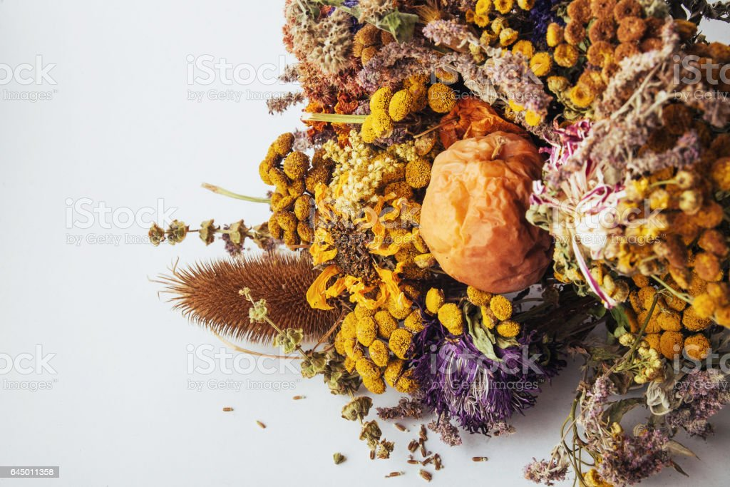 Dried flowers composition stock photo