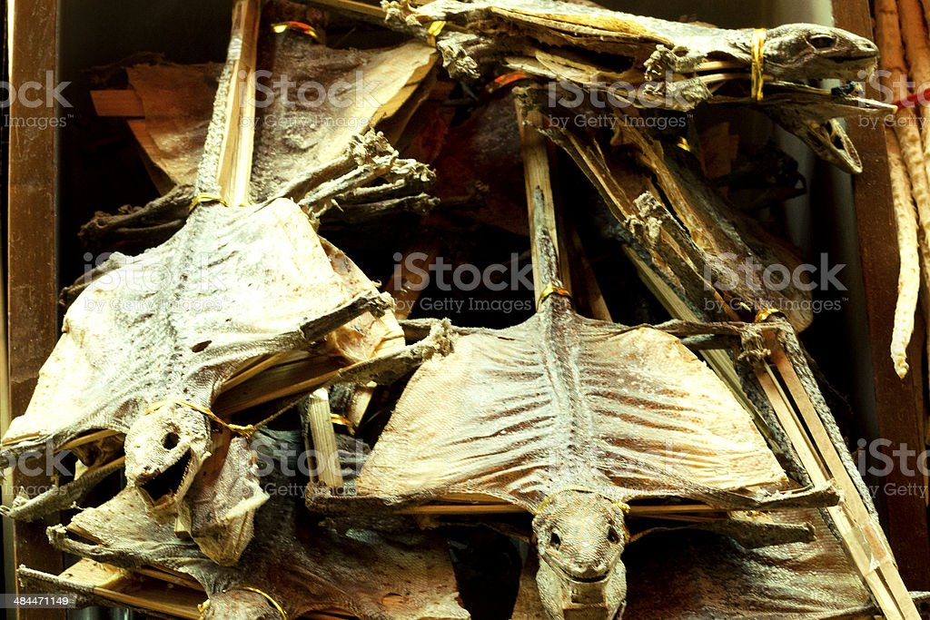 Dried Flying Lizards On Sale stock photo