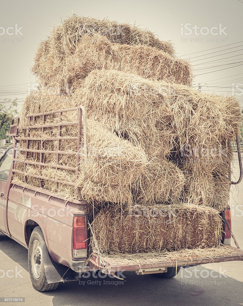 Dried haystack on truck stock photo