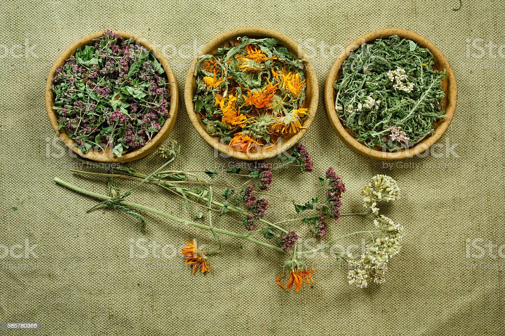 Dried. Herbal medicine, phytotherapy medicinal herbs. stock photo