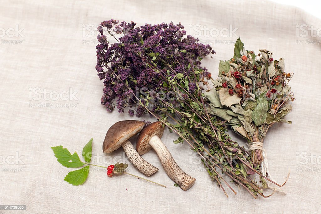 Dried herbs and mushrooms stock photo