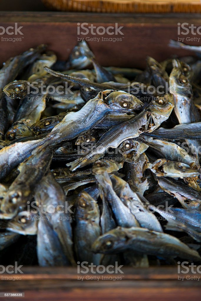 Dried Horse Mackerel stock photo