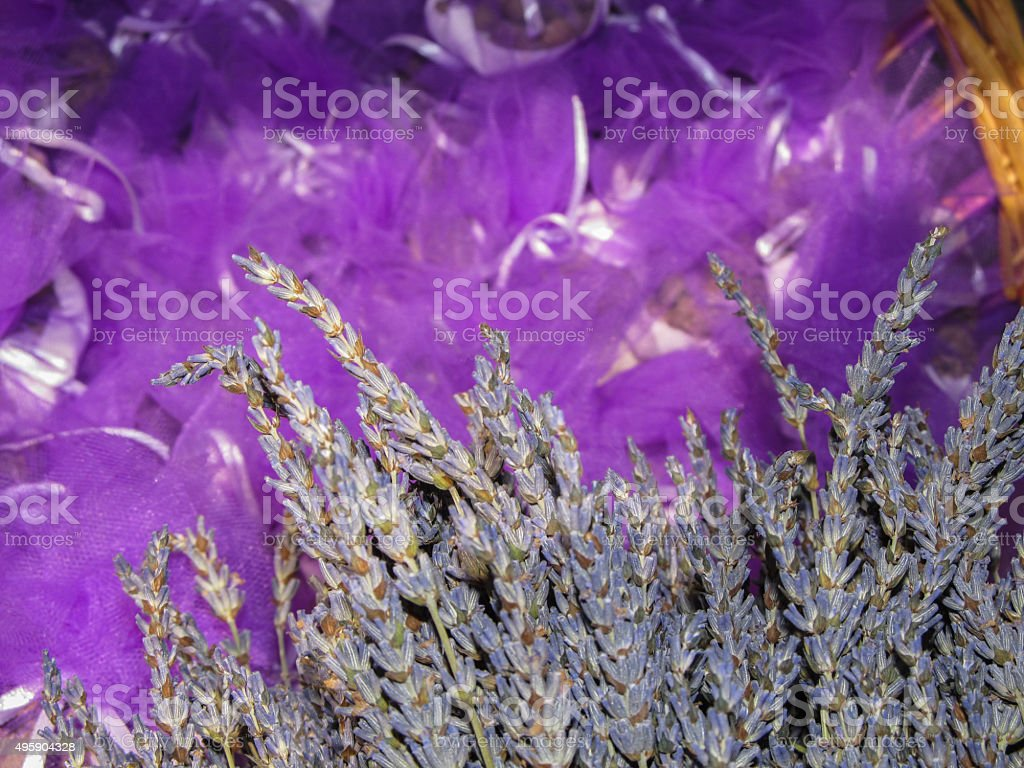 Dried lavender flowers royalty-free stock photo