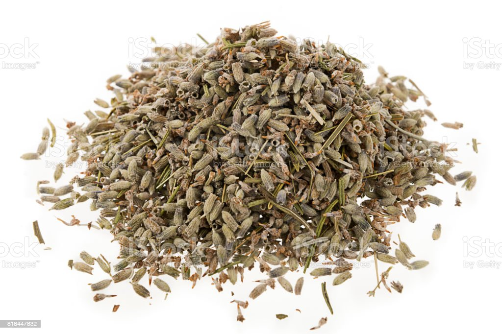 Dried Lavender Herb Isolated stock photo