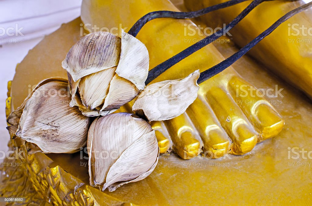 Dried lotus paste on Buddha statue's foots stock photo