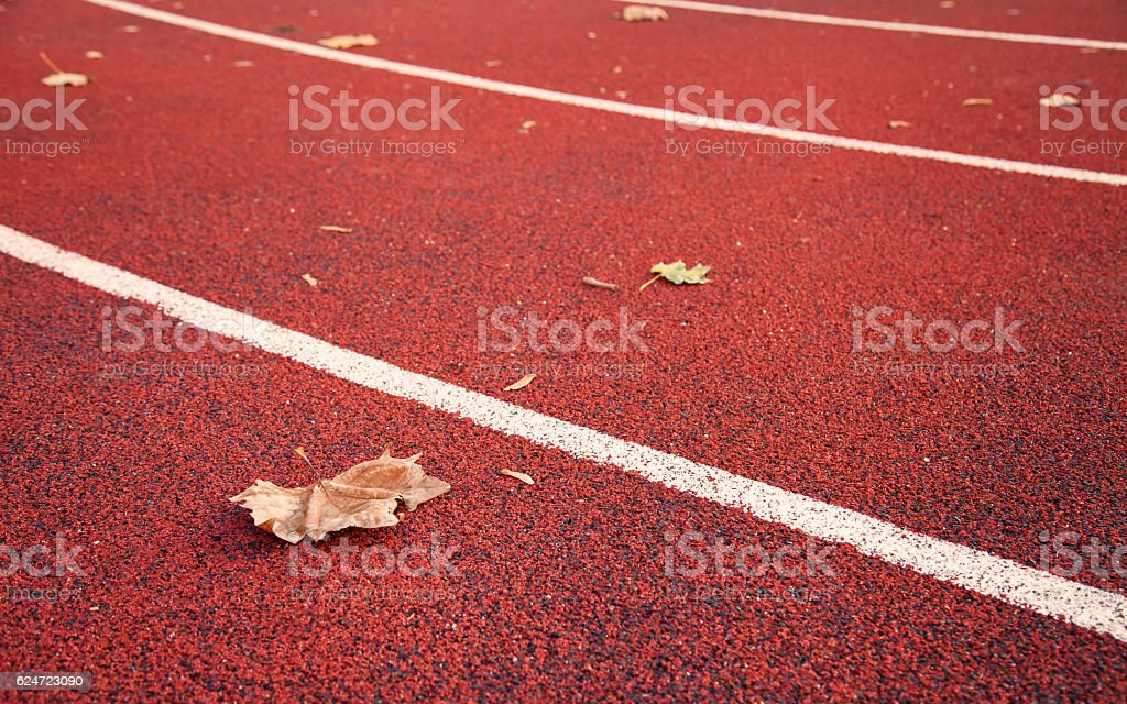 dried maple leaf on athletic race track stock photo