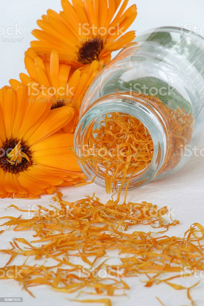 dried marigold royalty-free stock photo